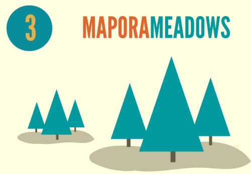 mapora